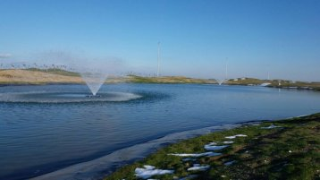 Aquamaster Fountain Aerator from Samsun Golf Club